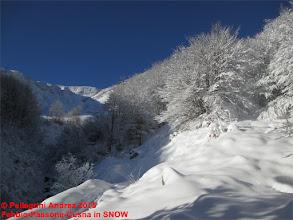 Photo: IMG_9926 verso il guado, sul 615 si apre la valle