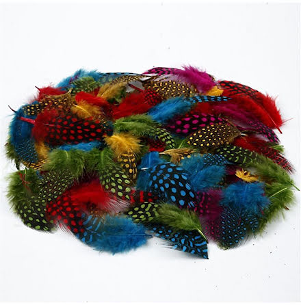 Pärlhönsfjädrar 50g mix färger