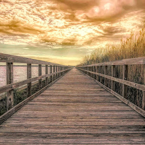 Into the Unknown by Ronnie Sue Ambrosino - Instagram & Mobile iPhone ( sky, storm, wharf, wood, clouds, dock, iphone, boardwalk, plank, planks,  )
