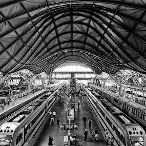 sc by Glen John Terry  - Transportation Trains ( southern cross,  )