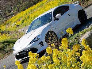 """86 GT""""Limited・High Performance Package""""・2017年式のカスタム事例画像 GOOPY【ご〜ぴ〜】さんの2020年02月23日14:41の投稿"""