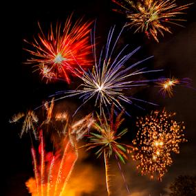 A Firework Fiesta  by Sandra Cockayne - City,  Street & Park  Night ( bonfire night, bonfire, firework fiesta, sandra cockayne, 5th november, fiesta, sandi cockayne, fireworks, guy fawkes,  )