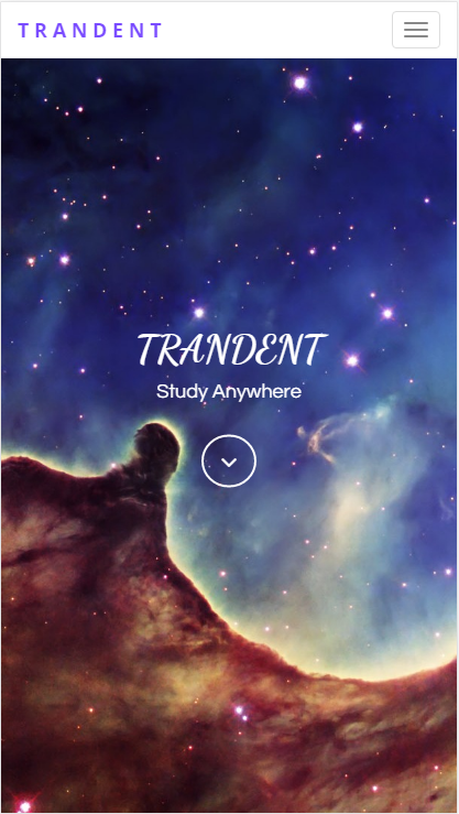 Trandent - Spring, JSP- screenshot