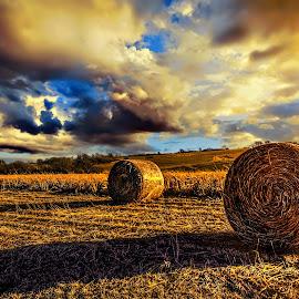 Hay by DE Grabenstein - Landscapes Prairies, Meadows & Fields