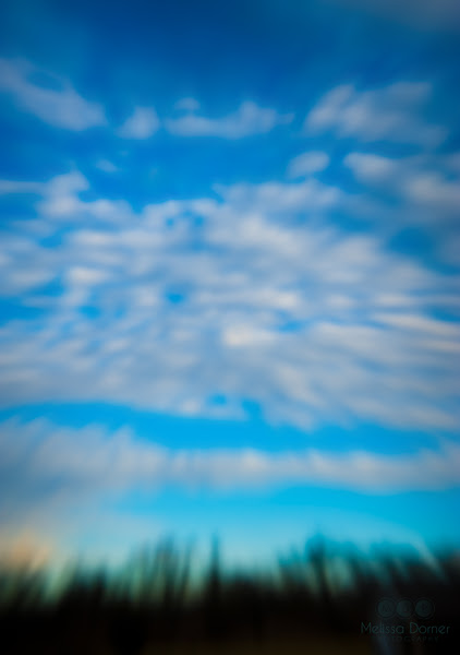Photo: Reach For The Clouds. Experiments with in-camera motion blur. #blur