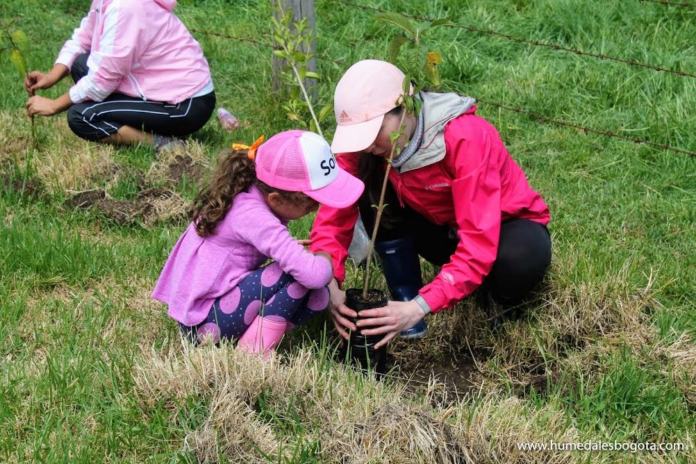 Jornada de plantación de árboles
