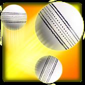 Swipe Cricket