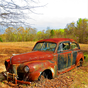 Rusting Beauty by Hal Gonzales - Transportation Automobiles ( field, car, old, rusty, rust, antique,  )