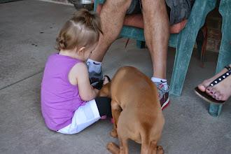 Photo: Akela helping Kourtlyn count her eggs