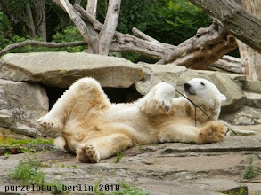 Photo: Laessiges Relaxen :-)