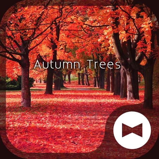 Autumn Trees wallpaper theme