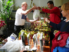 Photo: Wouter Noordeloos (left) selling many different plants and books for Carnivora, the Dutch CPS.