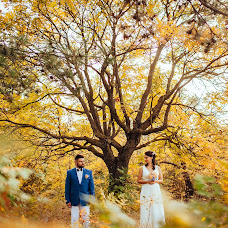 Wedding photographer Svetlana Trefilova (trefeelova). Photo of 13.10.2014