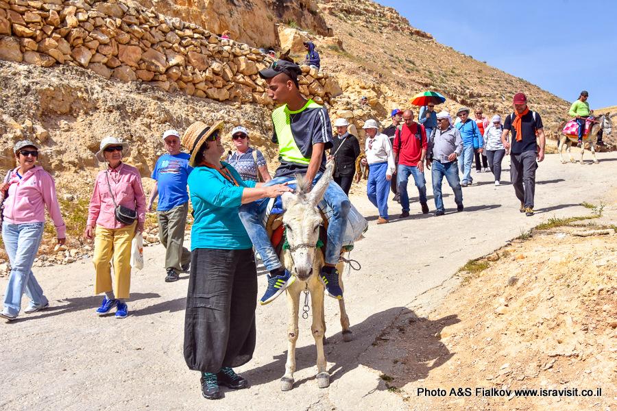 Гид в Израиле Светлана Фиалкова на экскурсии в Вади Кельт.
