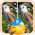 Spot 5 Differences Game House icon