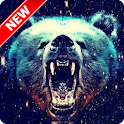 Cool Bear Wallpaper icon