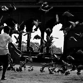 Flying without wings by Debarpan Sengupta - Babies & Children Children Candids