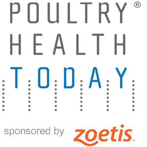 Image result for poultry health today