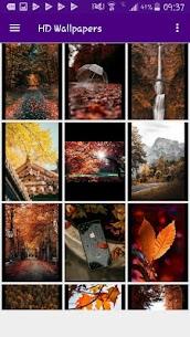 HD Wallpapers Offline 4