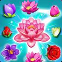 Blossom Splash icon