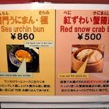 sea urchin in Tokyo, Tokyo, Japan