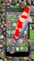 screenshot of KOI Lucky Fish 3D Theme