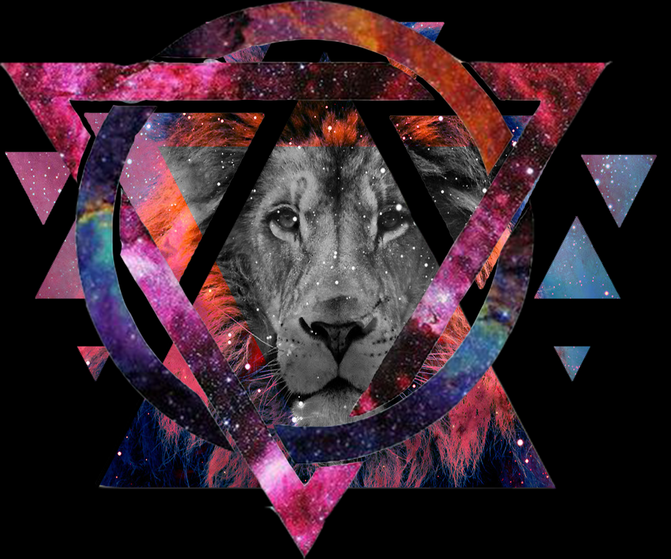 Hipster Wallpaper Galaxy Lion - Android Apps on Google Play