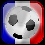 Euro 2016 Live Wallpaper Icon