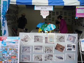 Photo: 環境ボランティアサークル亀の子隊のブース