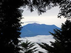 樹間から木曽御嶽山