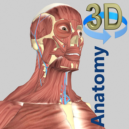 3D Anatomy - Apps on Google Play