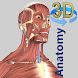 3D Anatomy - Androidアプリ