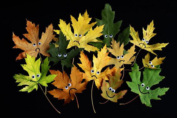 Sguardi d'autunno di BastetC