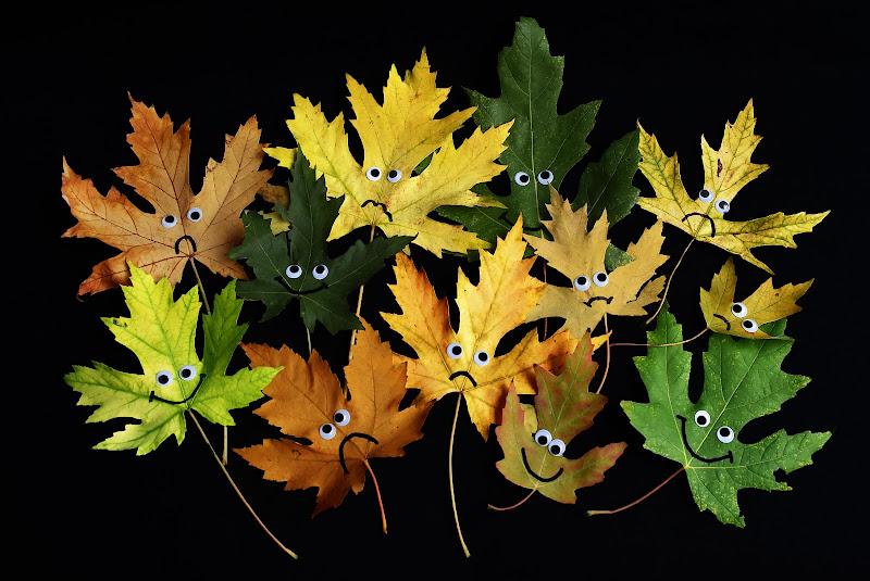 Sguardi d'autunno di BASTET-Clara