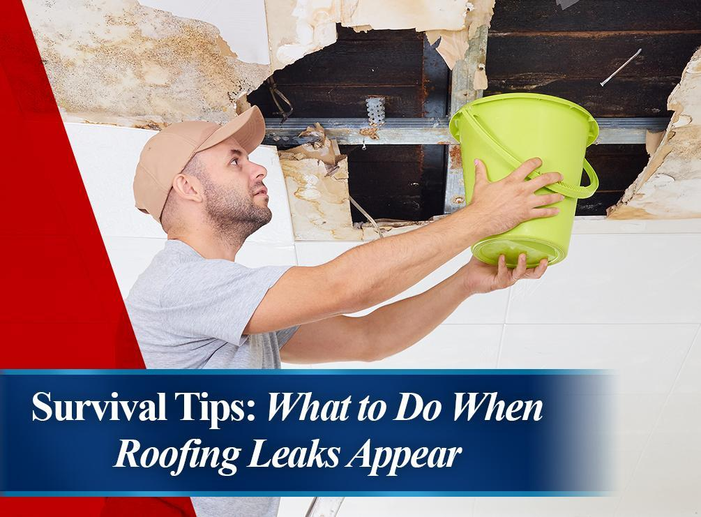 Roofing Leaks