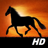 horse wallpapers HD free