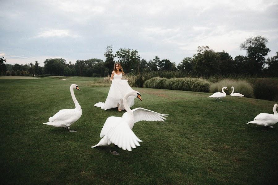 Wedding photographer Aleksey Bondar (bonalex). Photo of 05.09.2019