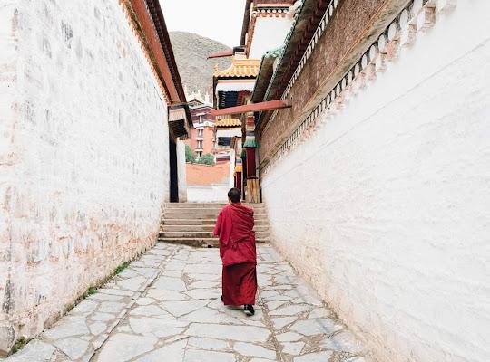 Labrang monastery di Thecityeyes