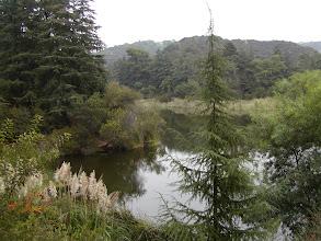 Photo: Random view of the Lake.