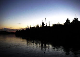 Photo: Dusky silhouettes.