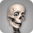 Skelly: Poseable Anatomy Model icon
