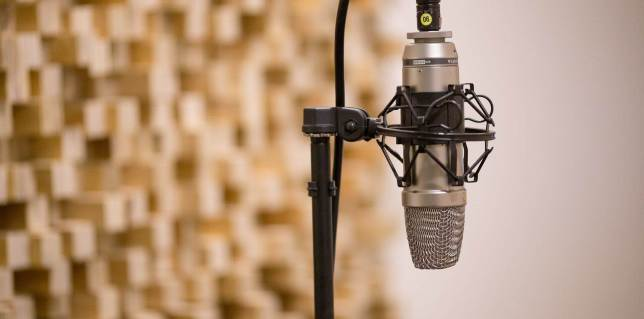 Vidnami-voice-recording