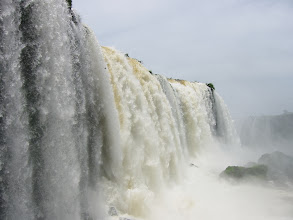 Photo: Birds darting behind falls