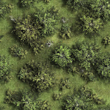 Photo: Now that the shameless plug of my last entry is out of the way, I thought I'd share something that I've been working on over the weekend...  It's my attempt at a seamless/repeating forest tile (done in the same style as my recent 'Into the Wilderness' map-packs) that can be loaded into your VTT of choice to create a huge forested area in a matter of seconds.  The image itself is 1000x1000 pixels (with each grid square measuring 50x50), and if you load it into something like +Tabletop Forge  (with the 'tile image' option selected), it should fill your entire map window with a near-seamless forest texture.  It's not as perfect as I would like, but I kinda like the way it has turned out.