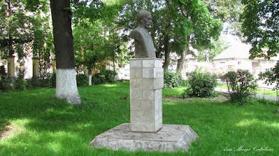 "Photo: Str. Dr. Ioan Ratiu, Nr.111 - Colegiul National ""Mihai Viteazul"" - Bustul lui Teodor Murasanu si ""Stejarul Uniri"" - (2013.06.14)"