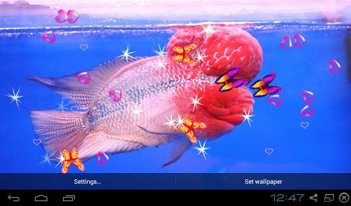 3D Flowerhorn Cichlid LWP