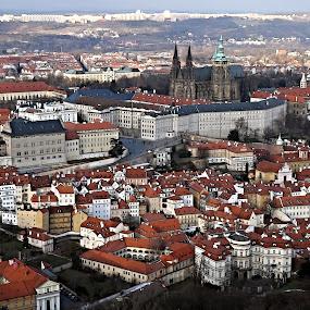Prague Castle - II. by Drahomír Škubna - Buildings & Architecture Public & Historical ( castle, prague )