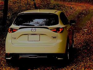 CX-5 KF2P XD Exclusive Mode/4WD/6EC-ATのカスタム事例画像 TSUCCIさんの2020年11月01日22:53の投稿