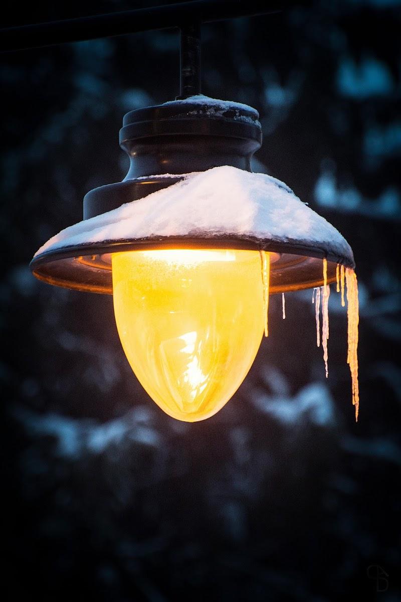 Luce calda nel freddo di simone_dagostino