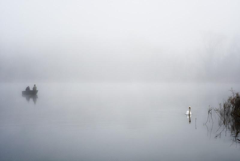 Sul lago di Varese di nidinola